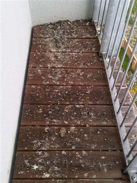 Balcony Cleaning in Cardiff, Swansea, South Wales, Bristol