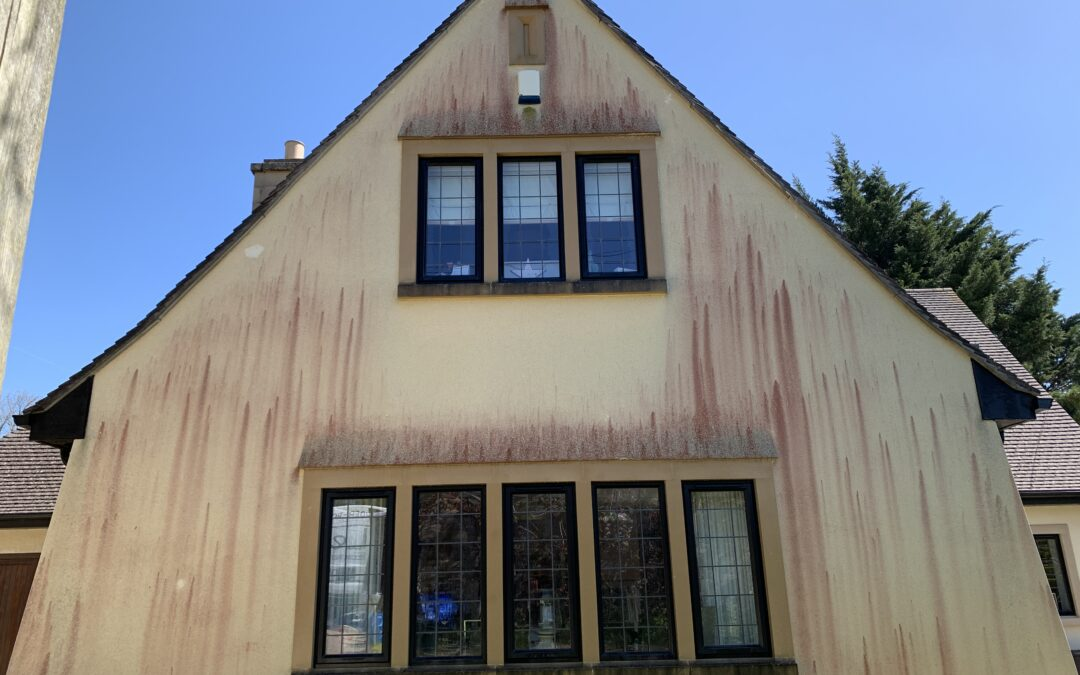 Does your house look like it's bleeding?